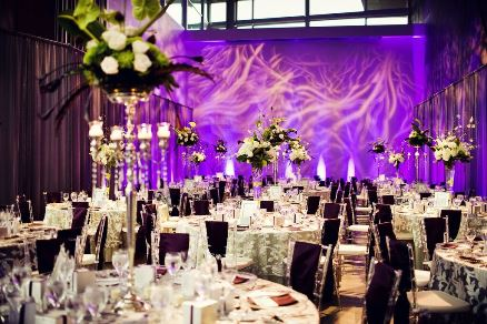 Unique wedding venues in edmonton edmonton tourism offer your guests a unique wedding favour by providing access to the exhibits most comfortable for 180 attendees junglespirit Images
